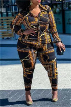 Multicolor Sexy Casual Print See-through Turndown Collar Plus Size Two Pieces