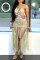 Pink Fashion Sexy Patchwork Tassel Hollowed Out Backless Swimwears Beach Dress