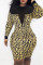 Leopard Print Sexy Casual Print Split Joint See-through O Neck Long Sleeve Dresses