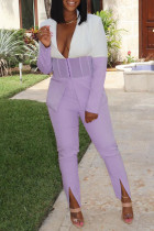 Light Purple Casual Work Solid Split Joint Slit Turn-back Collar Long Sleeve Two Pieces