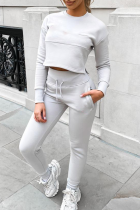 Silver Casual Solid Split Joint Hooded Collar Long Sleeve Two Pieces