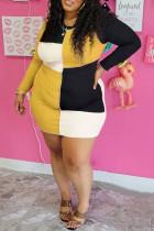 Multicolor Fashion Casual Patchwork Basic O Neck Long Sleeve Plus Size Dresses