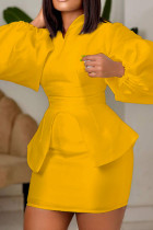 Yellow Fashion Casual Solid Asymmetrical V Neck Long Sleeve Two Pieces