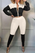 Black Casual Solid Split Joint Zipper Zipper Collar Long Sleeve Two Pieces