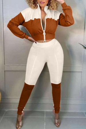 Brown Casual Solid Split Joint Zipper Zipper Collar Long Sleeve Two Pieces