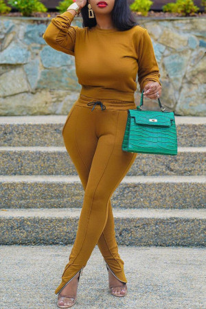 Ginger Fashion Casual Solid Basic O Neck Long Sleeve Two Pieces