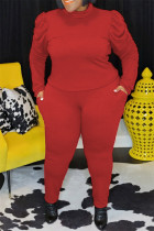 Red Fashion Casual Solid Basic Turtleneck Plus Size Two Pieces