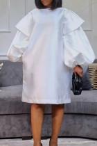 White Fashion Casual Solid Basic O Neck Long Sleeve Dresses