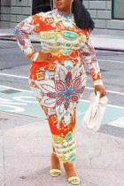 Orange Fashion Casual Print Basic Half A Turtleneck Long Sleeve Dresses