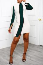 Ink Green Sexy Solid Split Joint Half A Turtleneck Irregular Dress Dresses
