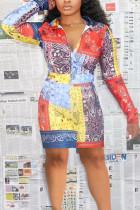 Multi-color Fashion Casual Adult Twilled Satin Print Split Joint Turndown Collar Long Sleeve Knee Length Printed Dress Dresses