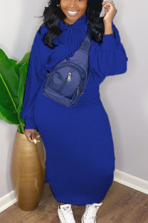 Blue Casual Solid Hooded Collar Long Sleeve Two Pieces