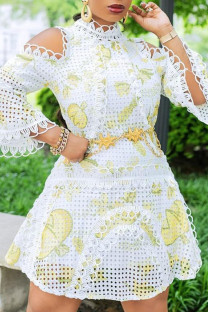 White College Print Embroidered Hollowed Out Split Joint V Neck A Line Dresses
