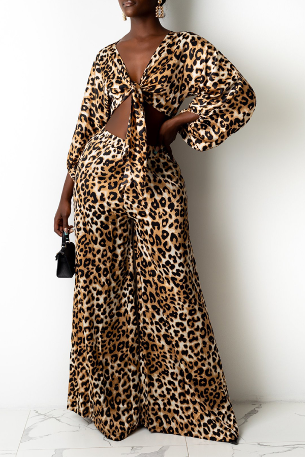 Leopard Print Sexy Print Split Joint V Neck Long Sleeve Two Pieces