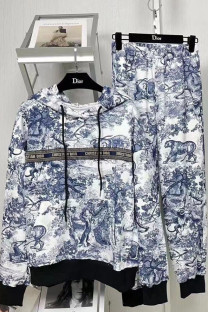 Multicolor Fashion Casual Print Split Joint Hooded Collar Long Sleeve Two Pieces