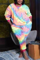 colour Fashion Casual Print Basic O Neck Plus Size Set