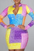 Multicolor Fashion Casual Print Basic Zipper Collar Long Sleeve Dresses