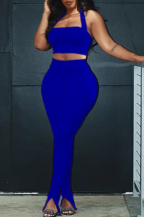 Royal Blue Fashion Sexy adult Ma'am Patchwork Solid Two Piece Suits pencil Sleeveless Two Pieces