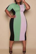 Light Green Fashion Casual Plus Size Striped Basic Zipper Collar Short Sleeve Dress