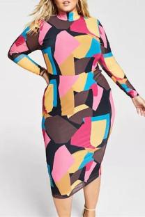 Multicolor Fashion Casual Print Basic Long Sleeve Plus Size Dresses