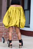 Red Casual Print Split Joint Off the Shoulder Lantern Dress Dresses