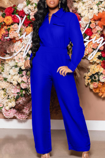 Blue Fashion Casual Solid Basic Turndown Collar Long Sleeve Two Pieces