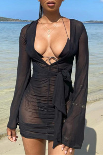 Black Sexy Solid Bandage See-through V Neck Long Sleeve Dresses