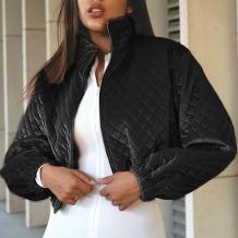 Black Casual Solid Split Joint Zipper Zipper Collar Outerwear
