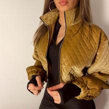 Gold Casual Solid Split Joint Zipper Zipper Collar Outerwear